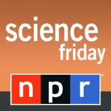 Science Friday Image